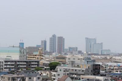 夢見ヶ崎動物公園から見える武蔵小杉の高層ビル群