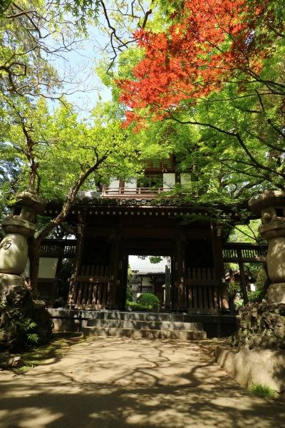 全龍寺の門